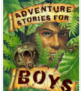 ADVENTURE STORIES FOR BOYS - Book