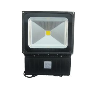 Bridgepoint Energy 100W Floodlight 4